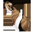 Peruaner-Meerschweinchen - Fell 1340000002